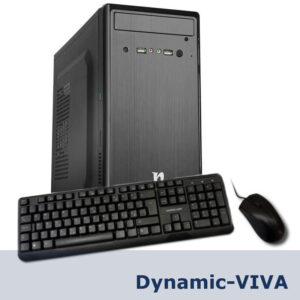 Dynamic-VIVA
